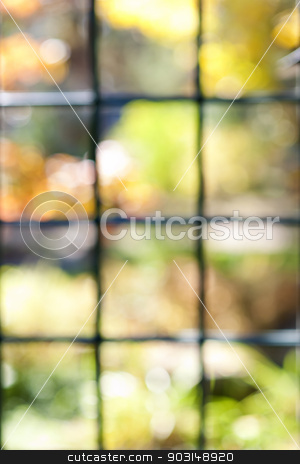 Garden view through window frame stock photo, Abstract blurred defocused bokeh background of colorful sunlit garden through window panes by Elena Elisseeva
