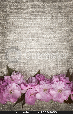 Cherry blossoms on linen background stock photo, Border of pink cherry blossoms row on natural rustic linen background by Elena Elisseeva