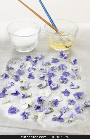 Making candied violets stock photo, Making candied violet flowers with egg whites and sugar by Elena Elisseeva