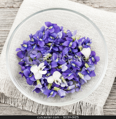 Edible violets in bowl stock photo, Foraged edible purple and white violet flowers in bowl from above, square format by Elena Elisseeva
