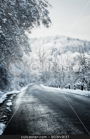 Winter road in forest stock photo, Icy winter road leading downhill through forest by Elena Elisseeva
