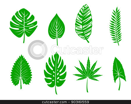 Green tropical leaves stock vector clipart, Set of green tropical leaves. Vector illustration by Anzhela Buch