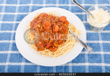 Spaghetti with Beef and Sausage Sauce stock photo, Spaghetti with a sauce of beef, tomatoes and sausage and shaved parmesan cheese on the side by Darryl Brooks