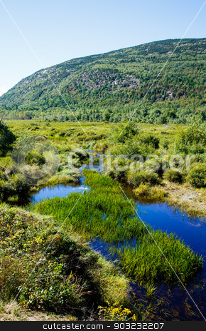 Lush Green Grass in Deep Blue Pond stock photo, River running through lush landscape by Mountain in Maine by Darryl Brooks