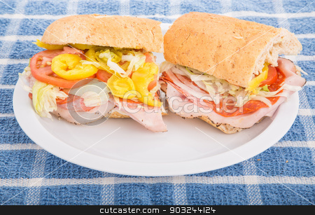 Italian Sub Sandwich with Hot Peppers stock photo, A fresh, italian sub sandwich on a white plate by Darryl Brooks
