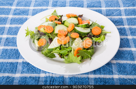Fresh Salad of Greens Cucumber and Carrots stock photo, A fresh salad of greens, cucumber, and carrots in a white plate by Darryl Brooks