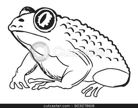toad stock vector clipart, hand drawn, sketch, cartoon illustration of toad by Oleksandr Kovalenko