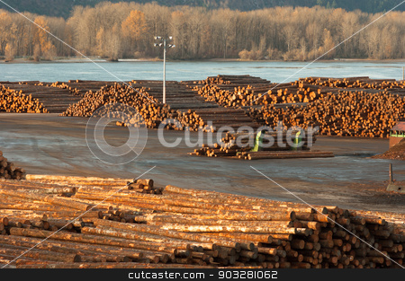 Large Timber Wood Log Lumber Processing Plant Riverside Columbia stock photo, Large storage yard for logging industry export from the Columbia River by Christopher Boswell