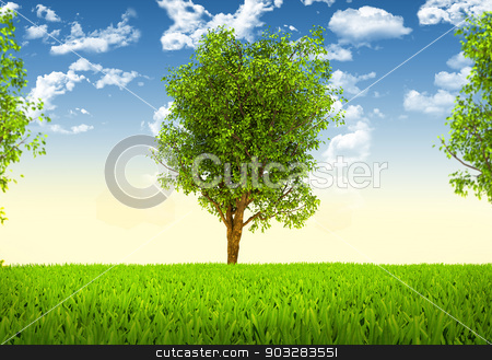 Trees and green landscape stock photo, Trees and green landscape. Beautiful natural background by cherezoff