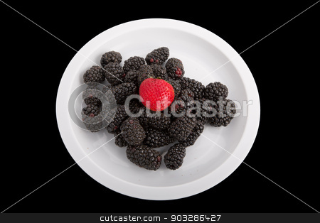 Blackberries and a Strawberry on White on Black stock photo, Fresh, ripe blackberries on white plate and black background with one red strawberry by Darryl Brooks