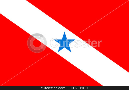 State flag of Para in Brazil stock photo, State flag of Para in Brazil. by Martin Crowdy