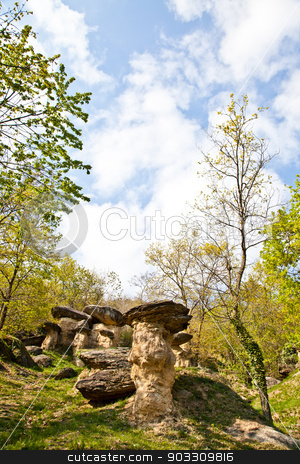 Imaginative forest landscape stock photo, Curious forest in Italy, Piemonte region, close to Cuneo city. The name of the forest is