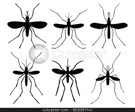 mosquito stock vector clipart, Black silhouettes of mosquito, vector by Matovic Ratko