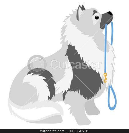 Keeshond Leash stock vector clipart, A Keeshond sitting with a leash in its mouth waiting to go for a walk by Maria Bell