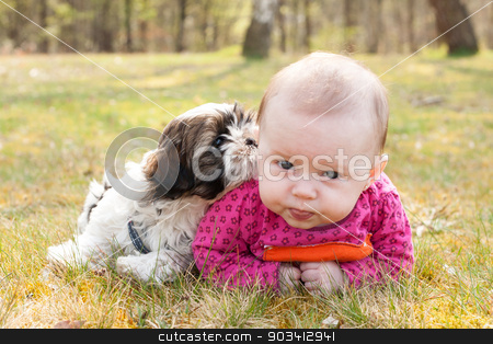 Baby and puppy on the grass stock photo, Cute baby and puppy are on the grass in nature by Frenk and Danielle Kaufmann