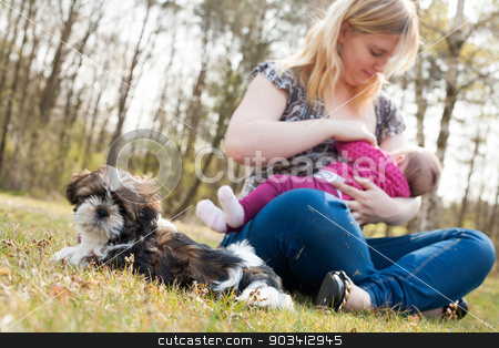 Mother is feeding the baby while puppy is waiting stock photo, Mother is having a trip with the baby and dog outside by Frenk and Danielle Kaufmann