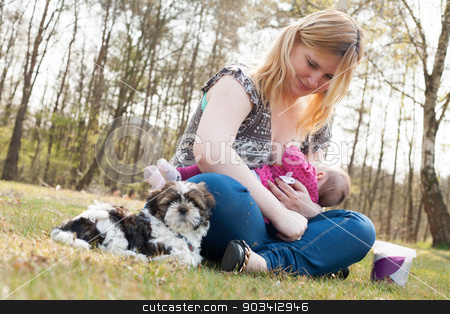 Sweet puppy while mother is feeding her daughter stock photo, Mother is having a trip with the baby and dog outside by Frenk and Danielle Kaufmann