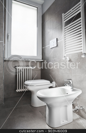 White toilette stock photo, White modern toilette and bidet on gray wall  by Dario Rota