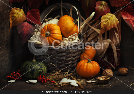 Autumn composition stock photo, Autumn composition ( pumpkins and corn on old wooden table). Thanksgiving day concept by klenova