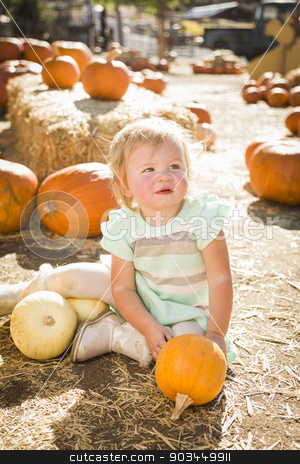Adorable Baby Girl Holding a Pumpkin at the Pumpkin Patch stock photo, Adorable Baby Girl Holding a Pumpkin in a Rustic Ranch Setting at the Pumpkin Patch. by Andy Dean
