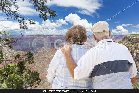 Happy Senior Couple Looking Out Over The Grand Canyon stock photo, Happy, Hugging Senior Couple Looking Out Over The Grand Canyon. by Andy Dean