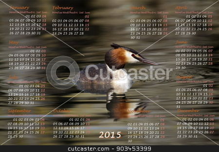 European 2015 year calendar with crested grebe duck stock photo, European 2015 year calendar with crested grebe duck on water by Elenarts