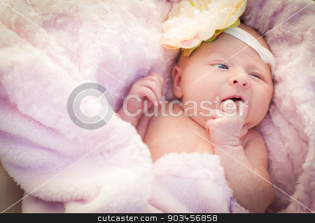 Beautiful Newborn Baby Girl Laying in Soft Blanket stock photo, Beautiful Newborn Baby Girl Laying Peacefully in Soft Pink Blanket. by Andy Dean