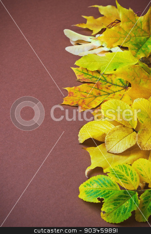 autumn leaves stock photo, different autumn leaves on a brown background. autumn backgrounds. space for text by Jevgeni Proshin