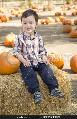 Mixed Race Young Boy Having Fun at the Pumpkin Patch stock photo, Cute Mixed Race Young Boy Having Fun at the Pumpkin Patch. by Andy Dean