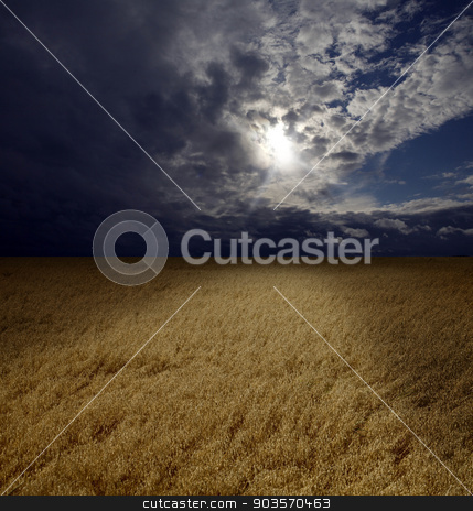 Sunset over cereals field  stock photo, Sunset over cereals field  by Juha Eronen