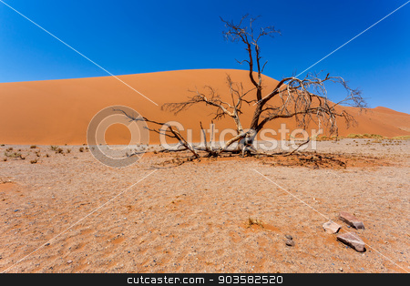 Dune 45 in sossusvlei Namibia with dead tree stock photo, Dune 45 in sossusvlei Namibia with dead tree, best of Namibia landscape by Artush