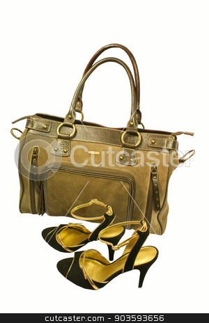 Fashion bag and shoes over white  stock photo, Fashion bag and shoes over white  by Dr.Art