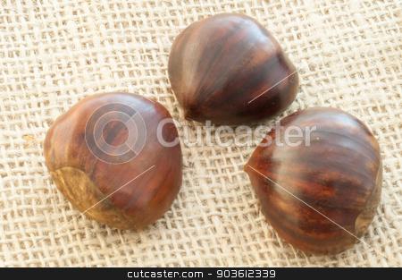 chestnut stock photo, beauitful macro of chestnut in jute background by francesco carniani