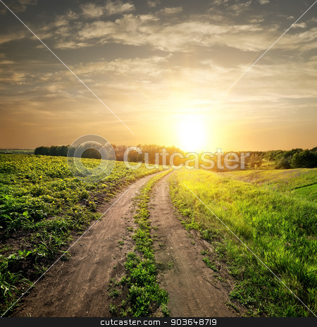 Sunset over country road stock photo, Sunset over country road and field of young sunflowers by Givaga