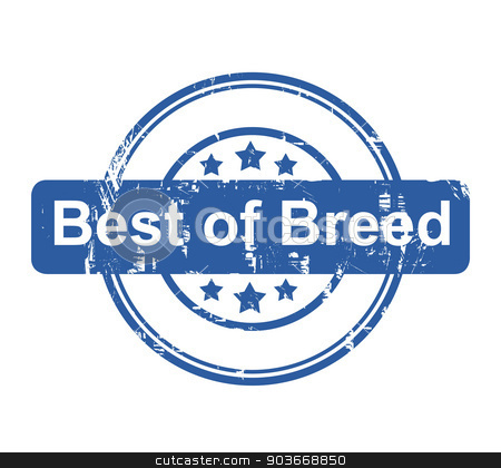 Best of breed business concept stamp stock photo, Best of breed business concept stamp with stars isolated on a white background. by Martin Crowdy