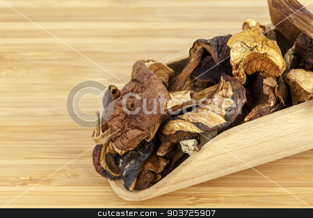 Wild dried mushrooms stock photo, Shown up close serving of wild dried mushrooms by marekusz
