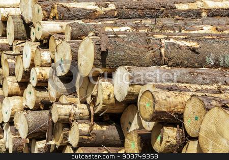 Freshly cut tree logs piled up stock photo, Freshly cut tree logs piled up waits for further processing by marekusz