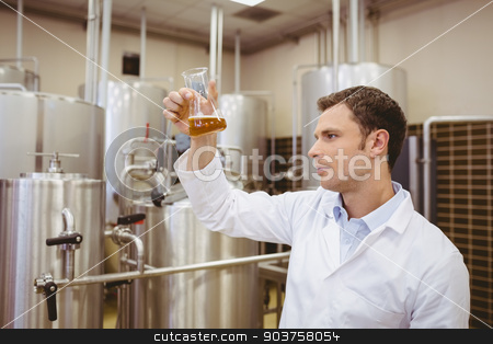 Focused brewer examining beaker with beer stock photo, Focused brewer examining beaker with beer in the factory by Wavebreak Media