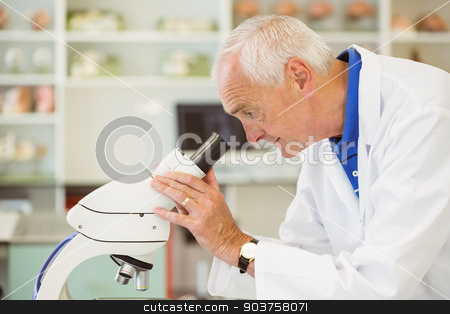 Senior scientist looking through microscope stock photo, Senior scientist looking through microscope at the university by Wavebreak Media