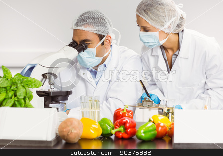 Food scientists using the microscope for research stock photo, Food scientists using the microscope for research at the university by Wavebreak Media