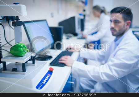 Food scientist using technology to analyse pepper stock photo, Food scientist using technology to analyse pepper at the university by Wavebreak Media