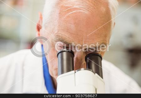 Senior scientist working with microscope stock photo, Senior scientist working with microscope at the university by Wavebreak Media
