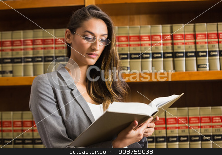 Pretty lawyer reading in the law library stock photo, Pretty lawyer reading in the law library at the university by Wavebreak Media