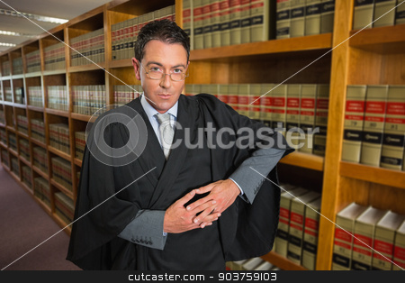 Lawyer looking at camera in the law library stock photo, Lawyer looking at camera in the law library at the university by Wavebreak Media