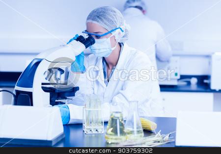 Food scientist using the microscope stock photo, Food scientist using the microscope at the university by Wavebreak Media