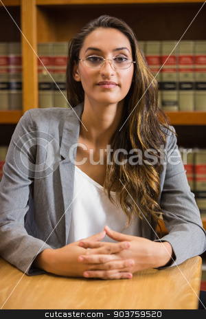 Pretty lawyer in the law library stock photo, Pretty lawyer in the law library at the university by Wavebreak Media