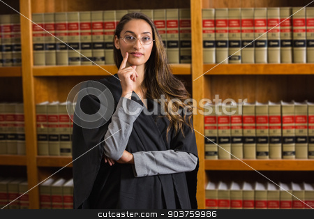 Pretty lawyer looking at camera in the law library stock photo, Pretty lawyer looking at camera in the law library at the university by Wavebreak Media