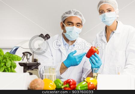 Food scientists looking at a pepper stock photo, aFood scientists looking at a pepper t the university by Wavebreak Media