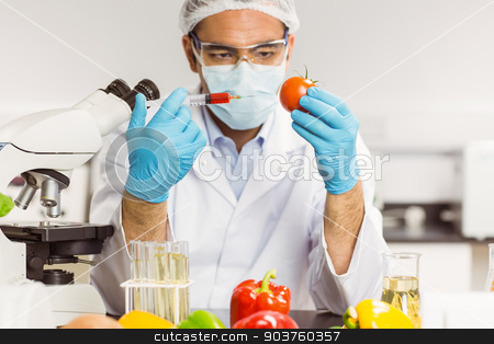 Food scientist injecting a tomato stock photo, Food scientist injecting a tomato at the university by Wavebreak Media