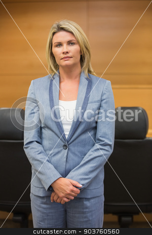 Stern lawyer looking at camera stock photo, Stern lawyer looking at camera in the court room by Wavebreak Media